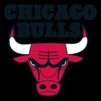 College Notre-Dame de Jamhour - Baabda-Chicago Bulls